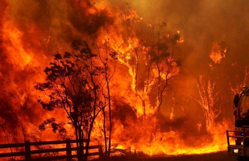 Bush Fire Season | Tips