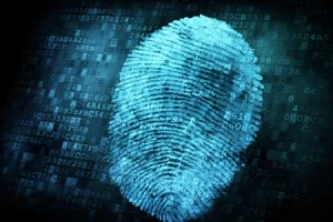 Specialised Forensic Cleanup Services