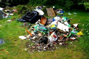 Eviciton & Squalor Cleaning