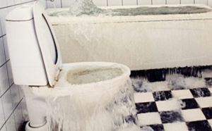 Sewage Water Category 3 Damage