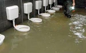 Sewage Water Back Up Cleans Brisbane