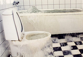Sewage Clean Ups