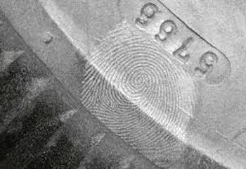 Sunshine Coast Fingerprint Dust Clean Ups